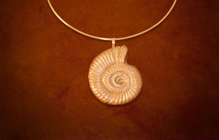 shell-brass