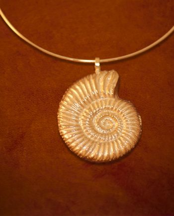shell-gold